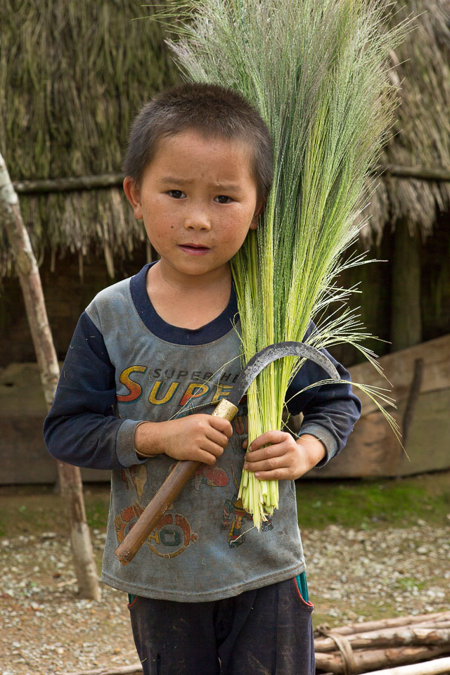 """Lao boy with Sickle and Rice"" by Neil Cordell"
