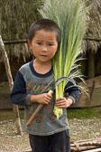 NSC-2012-11-25-Laos-Vietnam-01426.jpg